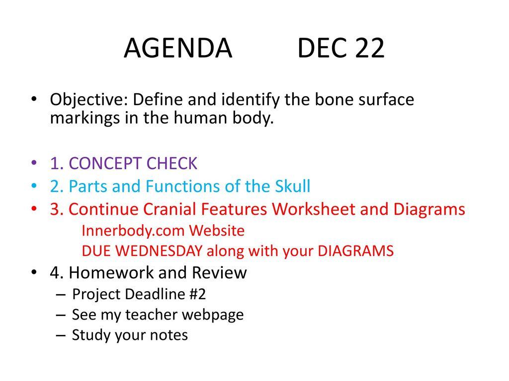 Agenda Dec 21 Objective Define And Identify The Bone Surface
