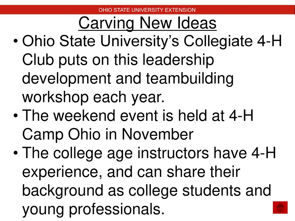 older 4-h youth opportunities. - ppt download