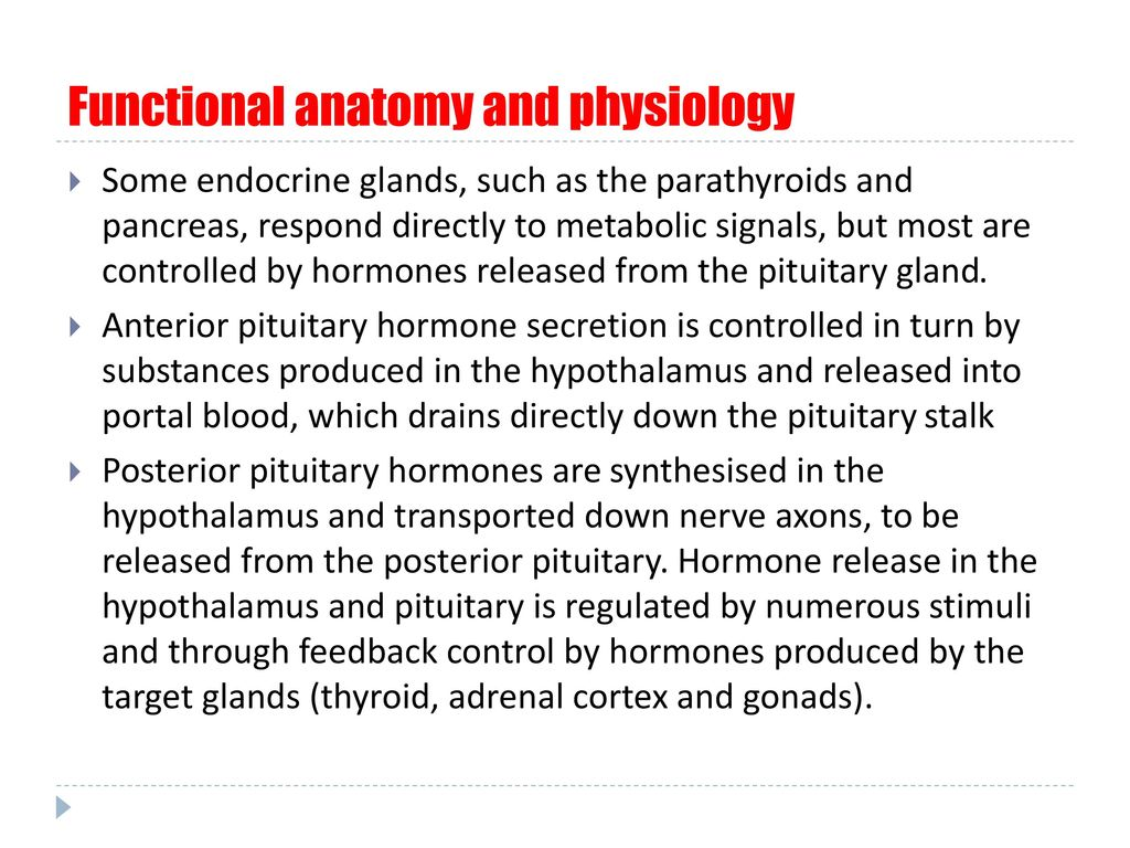 Introduction to Endocrinology - ppt download