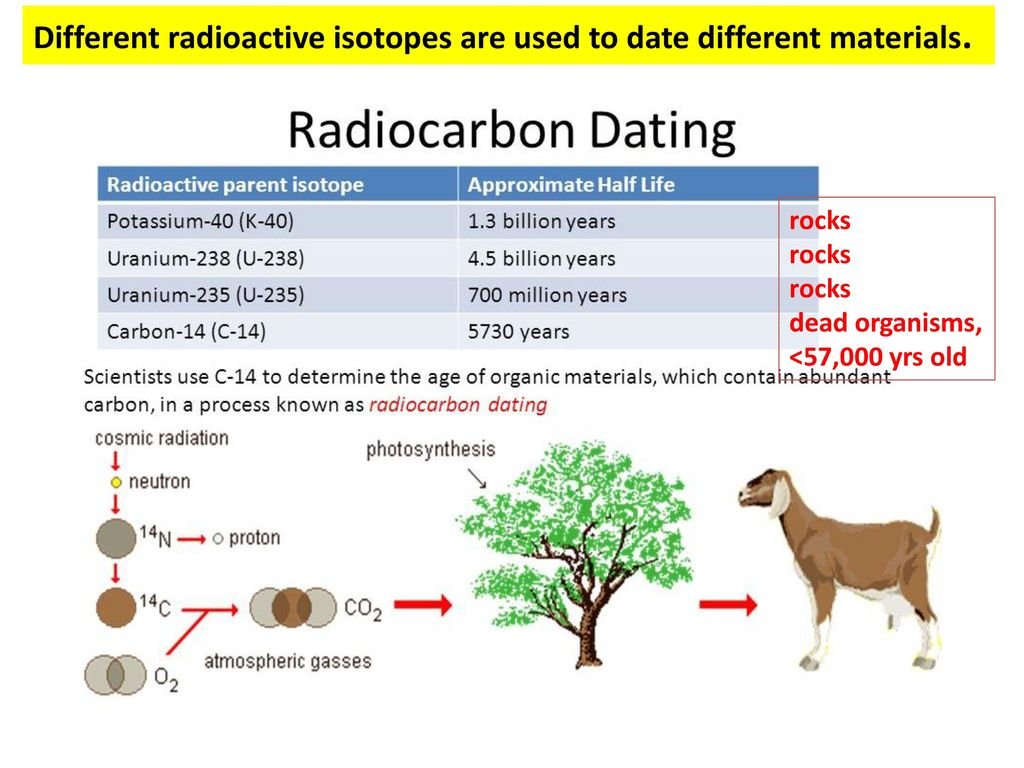 how can an isotope like carbon 14 be used to date dead organisms