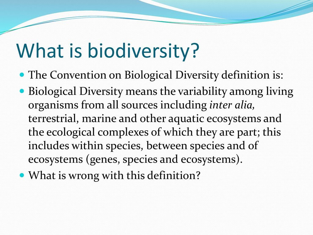biodiversity and agriculture - ppt download