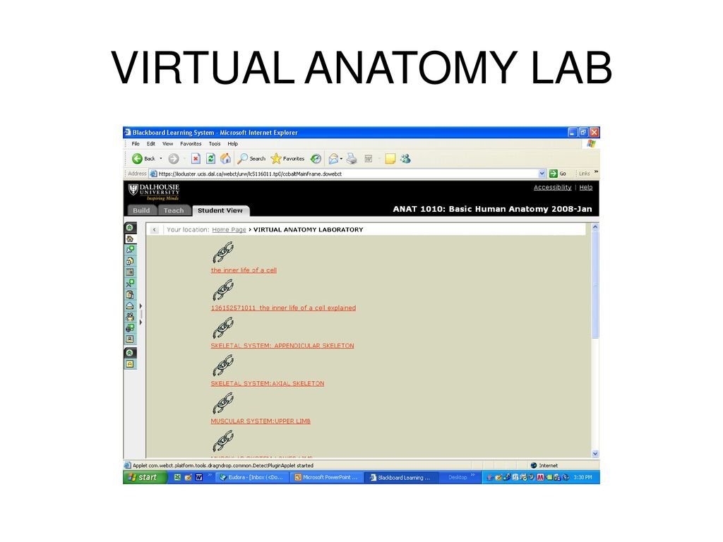 WELCOME TO ANAT ppt download