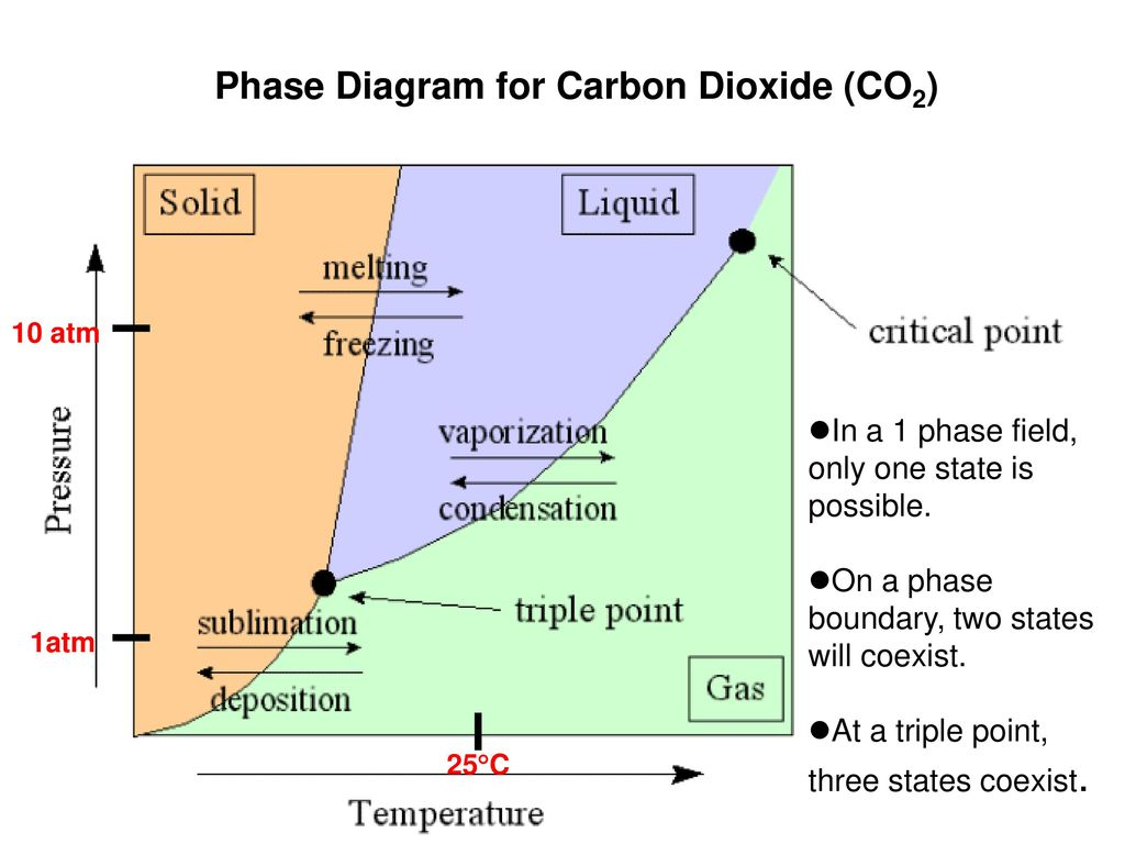 6 phase diagram for carbon dioxide
