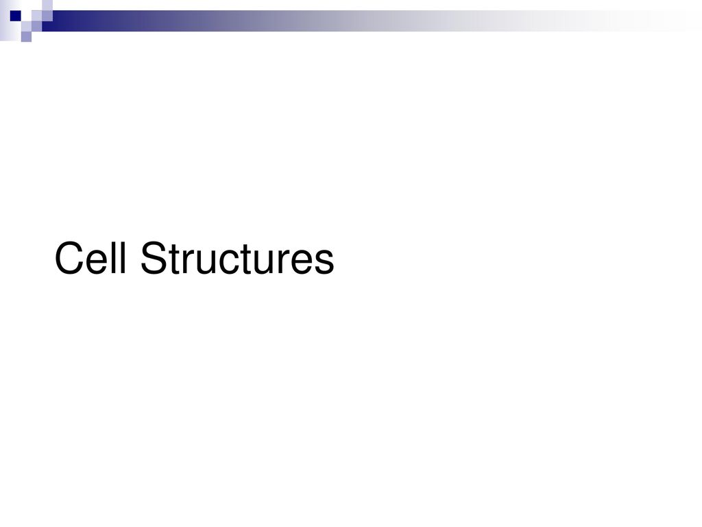 Cell Structure And Function Ppt Download Prokaryoticcelljpg 3 Structures
