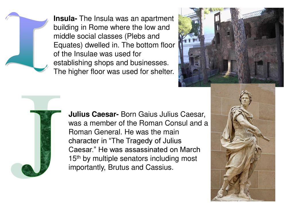 an analysis of julius ceasars assassination in the tragedy of julius caesar Julius caesar by william shakespeare examines the rise and fall of julius caesar caesar's skill on the battlefield propels the roman empire to great heights, but not everyone is pleased with his results brutus and cassius become worried about his rise to power and start to plot his assassination while.