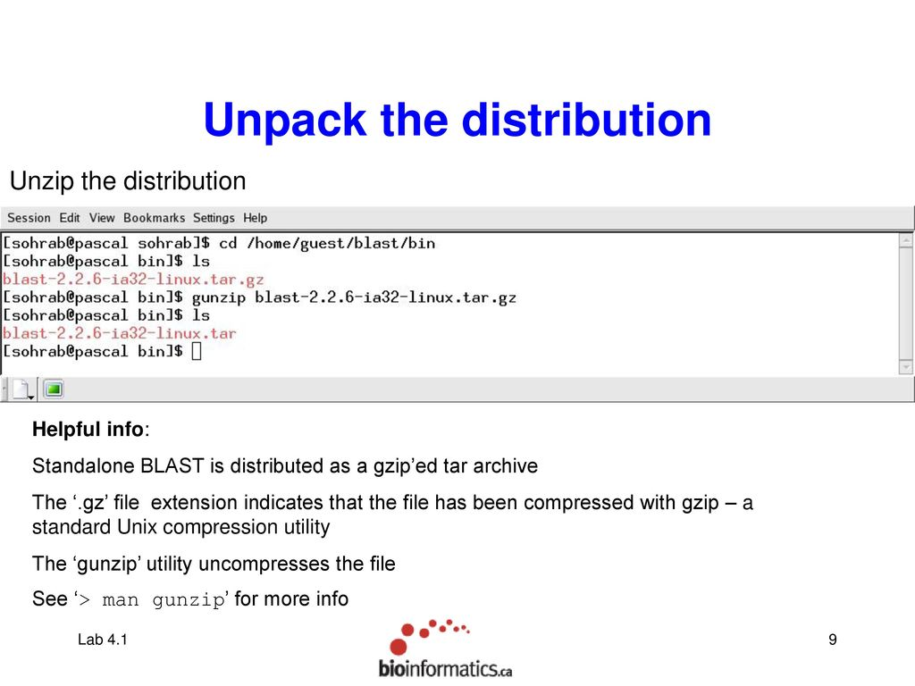 Stand alone BLAST on Linux - ppt download