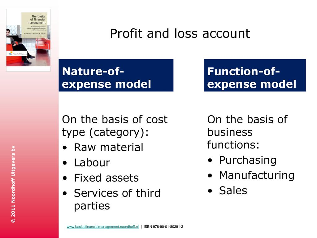 model of profit and loss account
