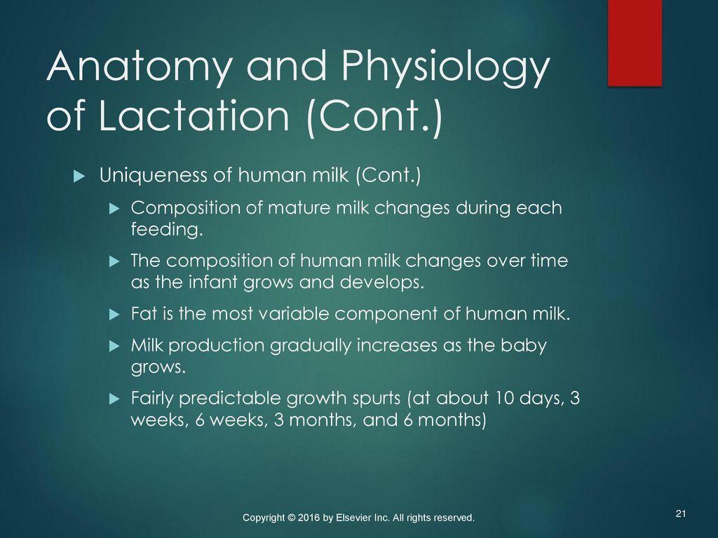 Lujo Newborn Anatomy And Physiology Modelo - Anatomía de Las ...