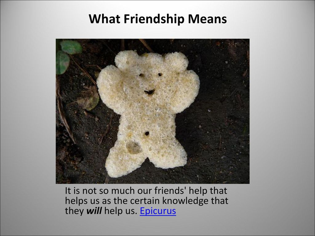 What Friendship Means It is not so much our friends help that helps us as the certain knowledge that they will help us.