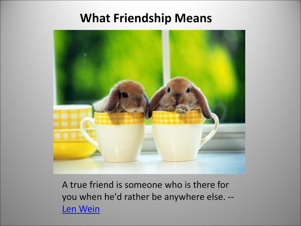 What Friendship Means A true friend is someone who is there for you when he d rather be anywhere else.