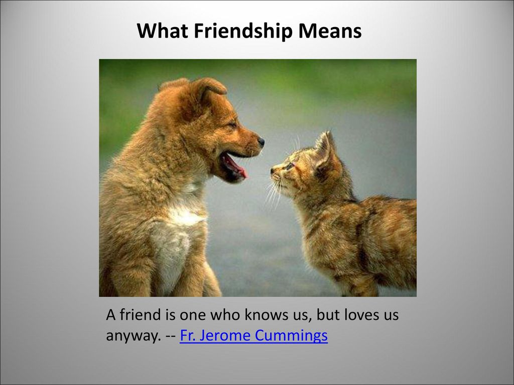 What Friendship Means A friend is one who knows us, but loves us anyway. -- Fr. Jerome Cummings