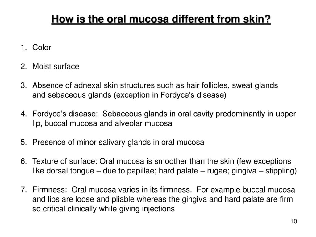 The Structure of Oral Mucosa - ppt download