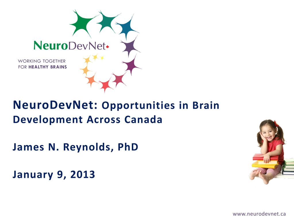 NeuroDevNet: Opportunities in Brain Development Across