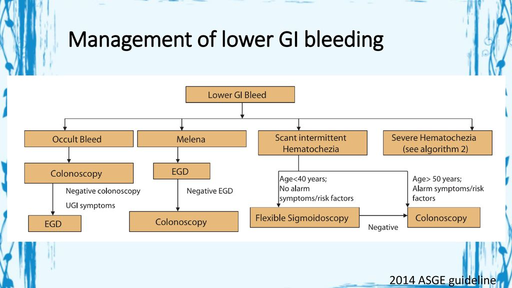 Approach to gastrointestinal bleeding - ppt download