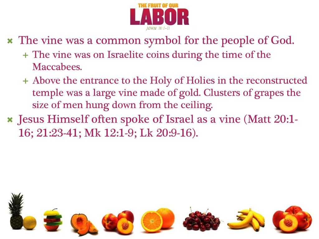 The vine was a common symbol for the people of God  - ppt