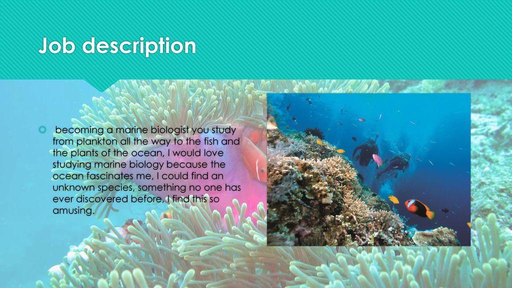 My Career Of Marine Biology