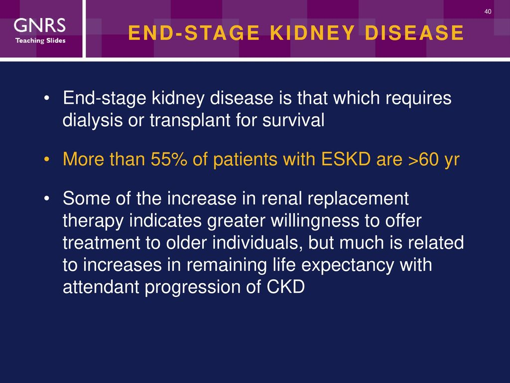 Kidney Diseases And Disorders Ppt Download