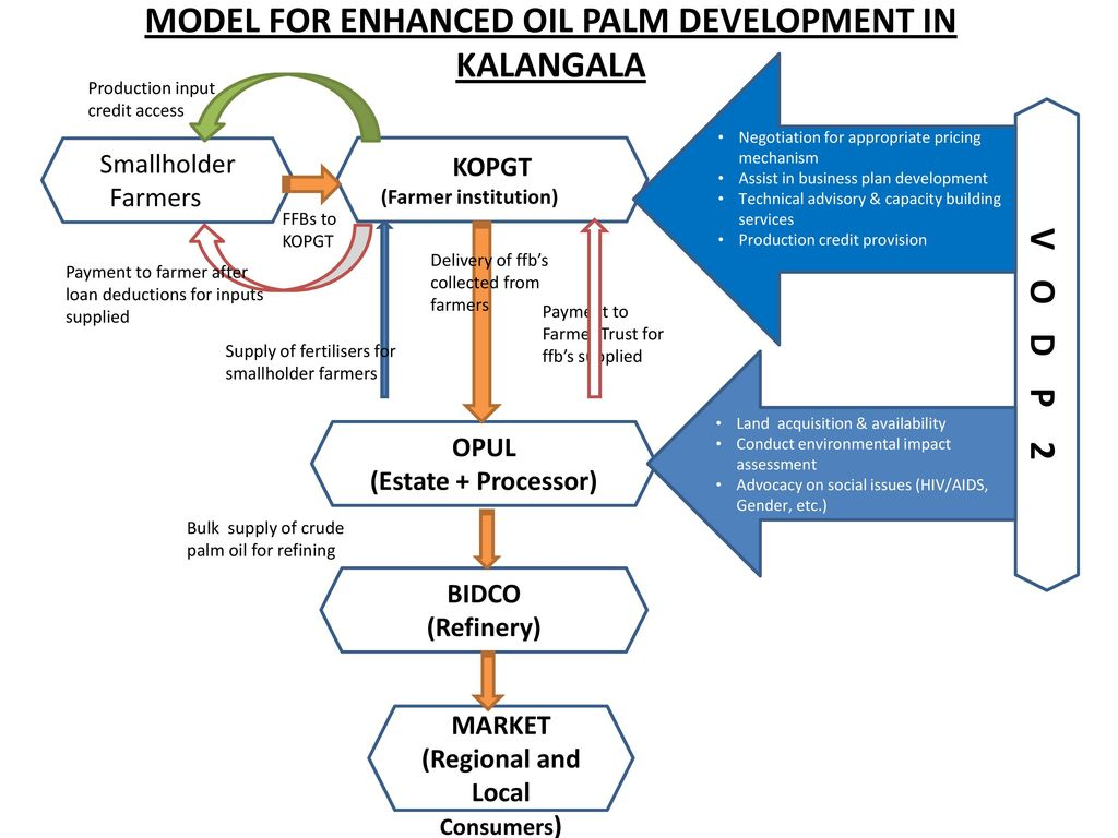 OIL PALM COMPONENT  - ppt download