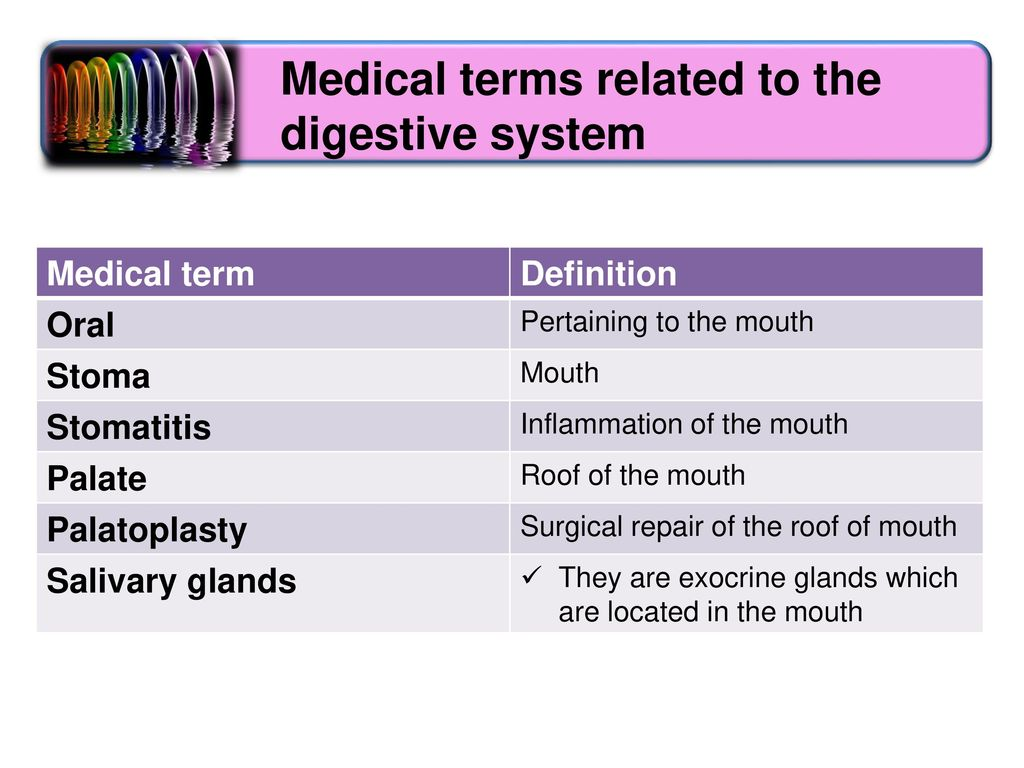 Medical terms related to the digestive system