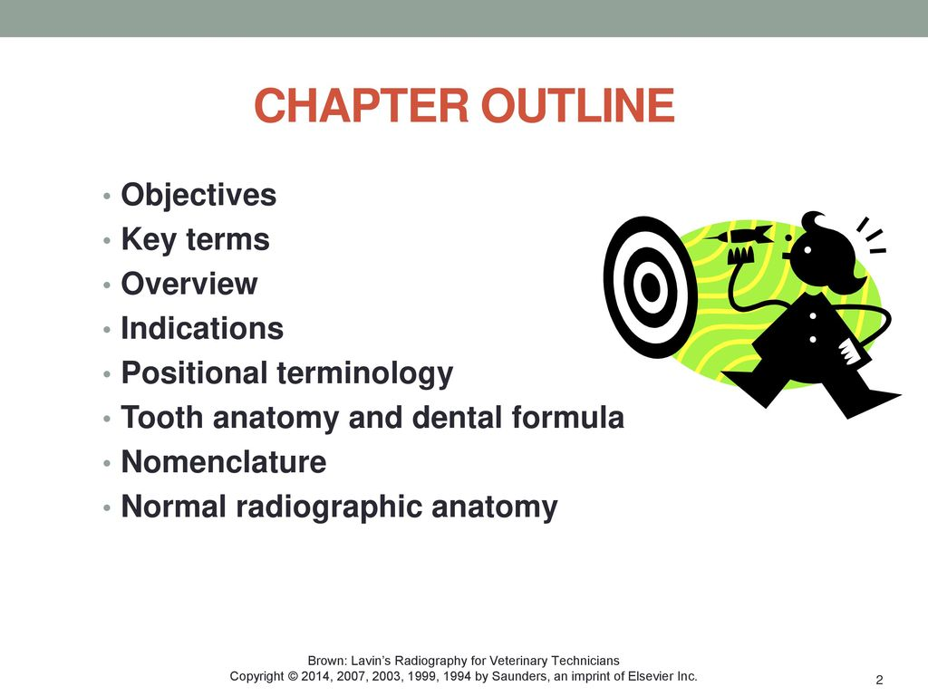 DENTAL RADIOGRAPHY Chapter ppt download