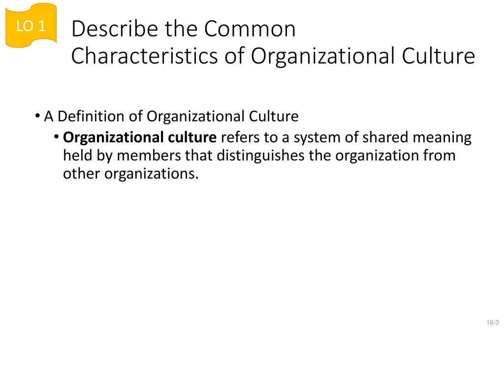 lesson 16: organizational culture - ppt download