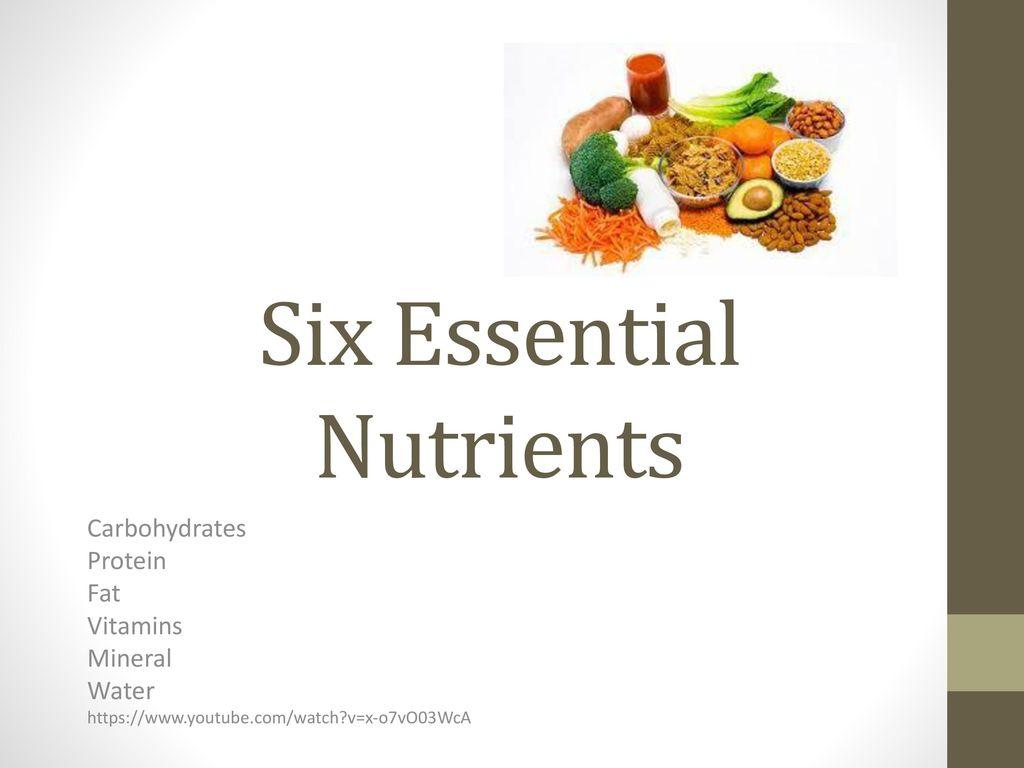 Six Essential Nutrients