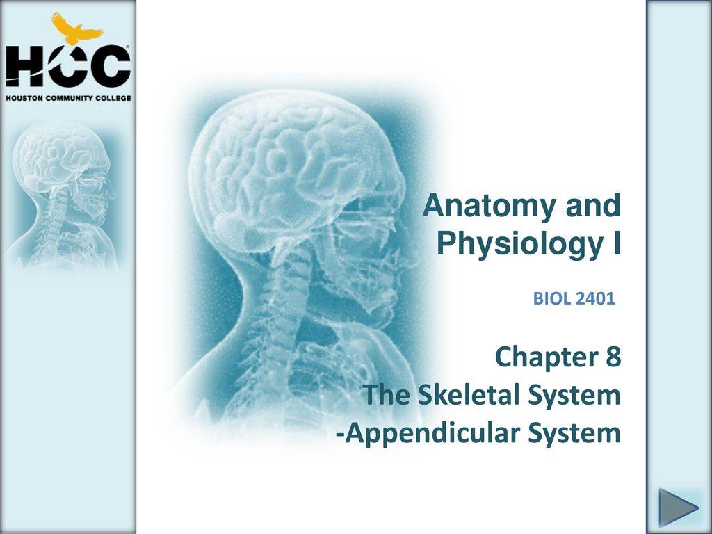 Magnífico Hcc Anatomy And Physiology Lab Patrón - Anatomía de Las ...