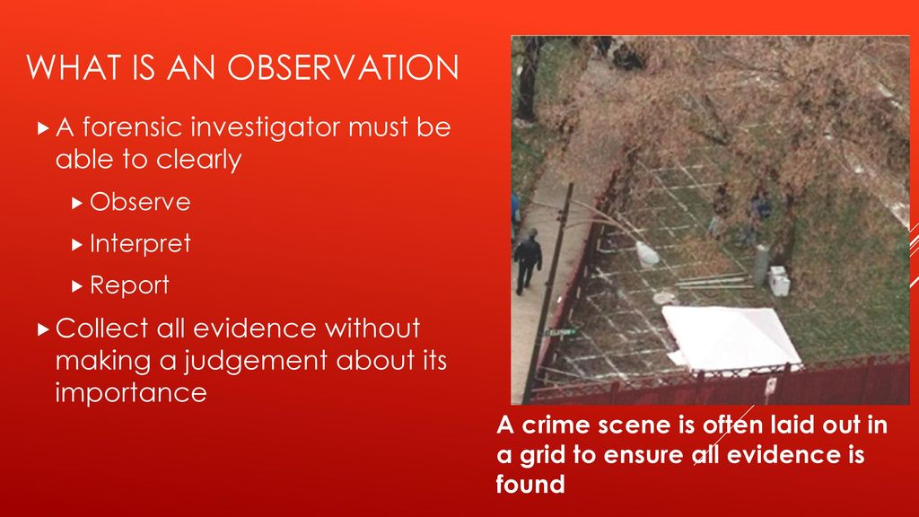 Chapter 3 Observation Skills Ppt Download