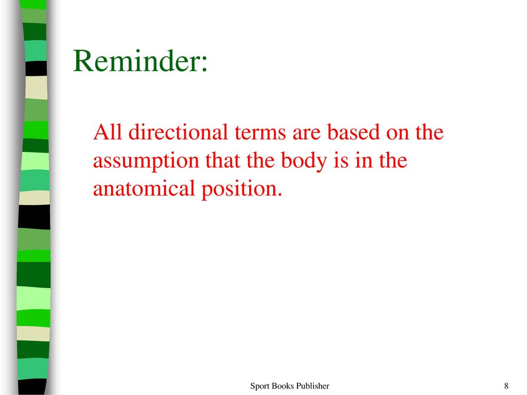 Funky Anatomy And Physiology Directional Terms Worksheet ...