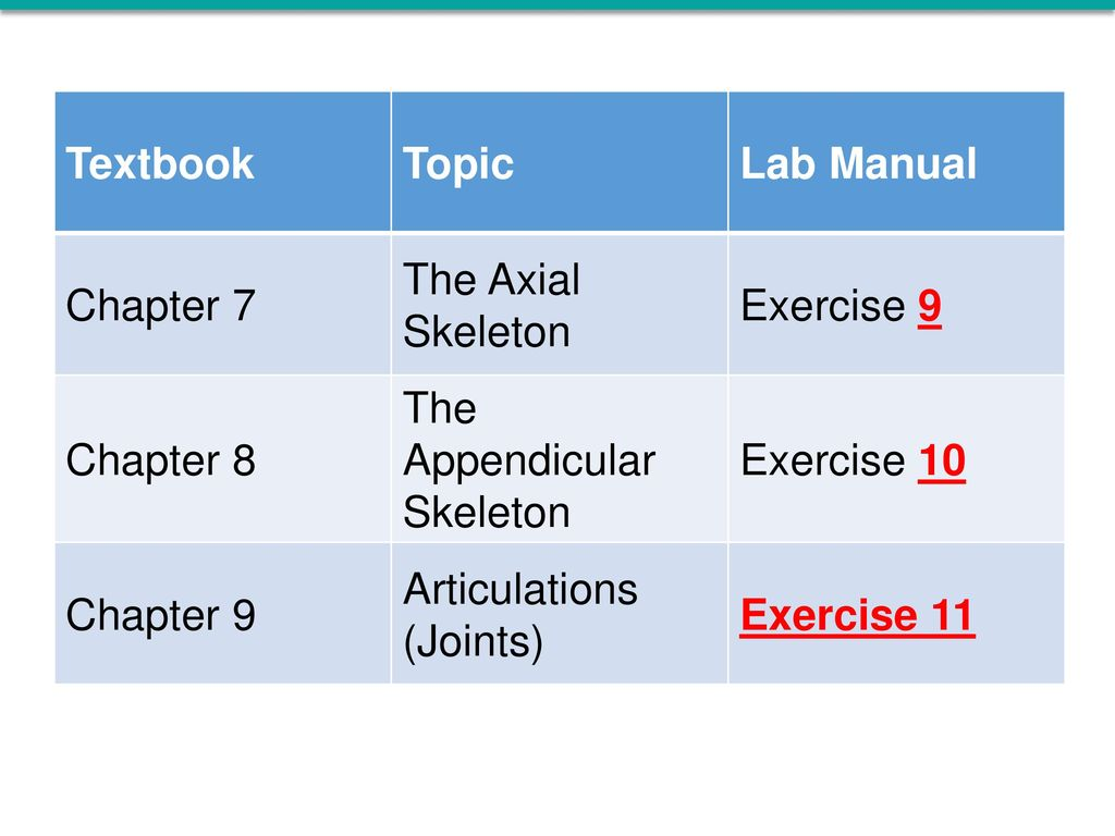 Lab Manual. Chapter 7. The Axial Skeleton. Exercise 9.