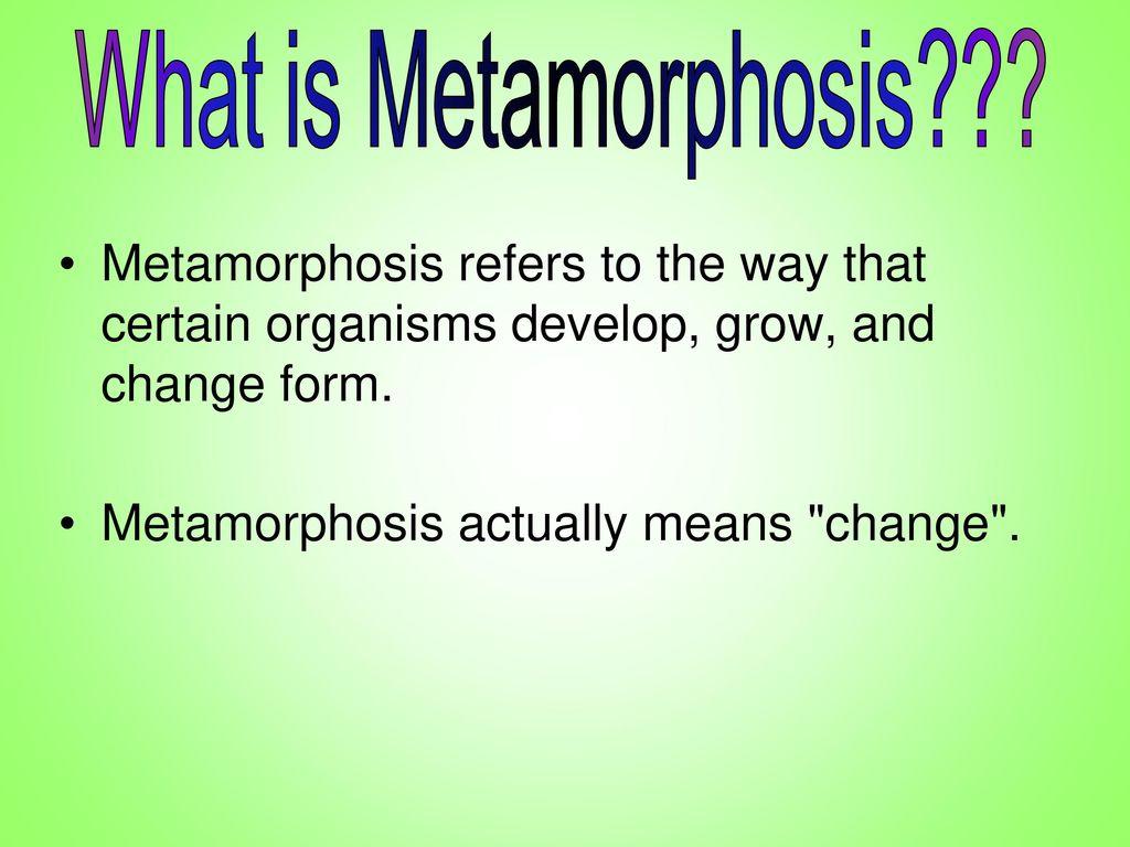 What is metamorphosis