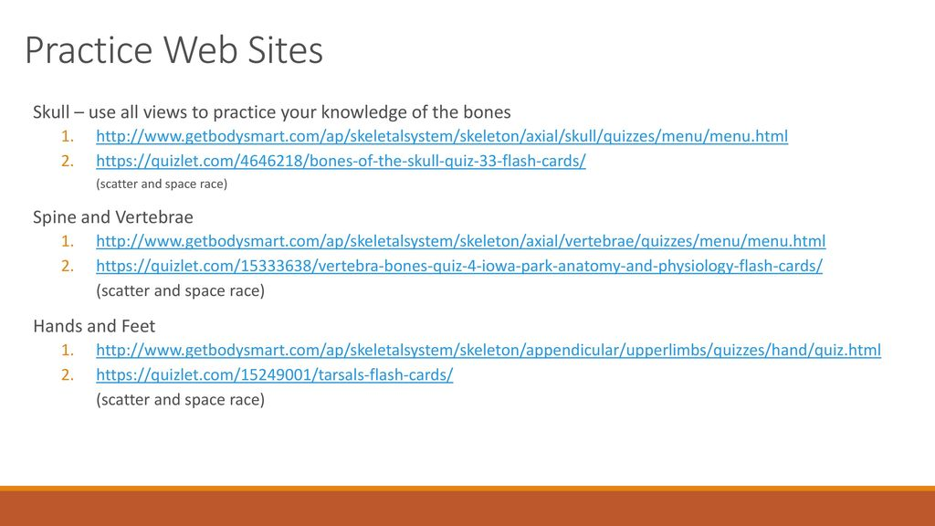 Practice Web Sites Skull – us all views to practice your