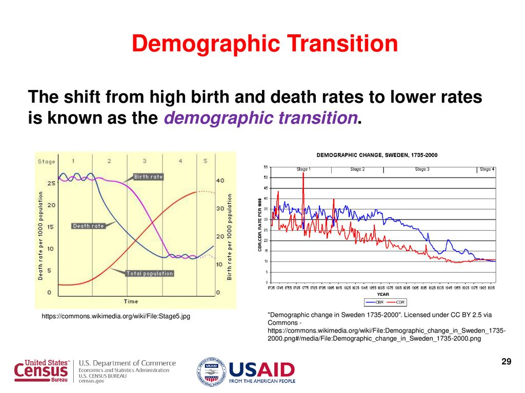 Demographic analysis age and sex structure the population pyramid as 25 demographic transition ccuart Gallery