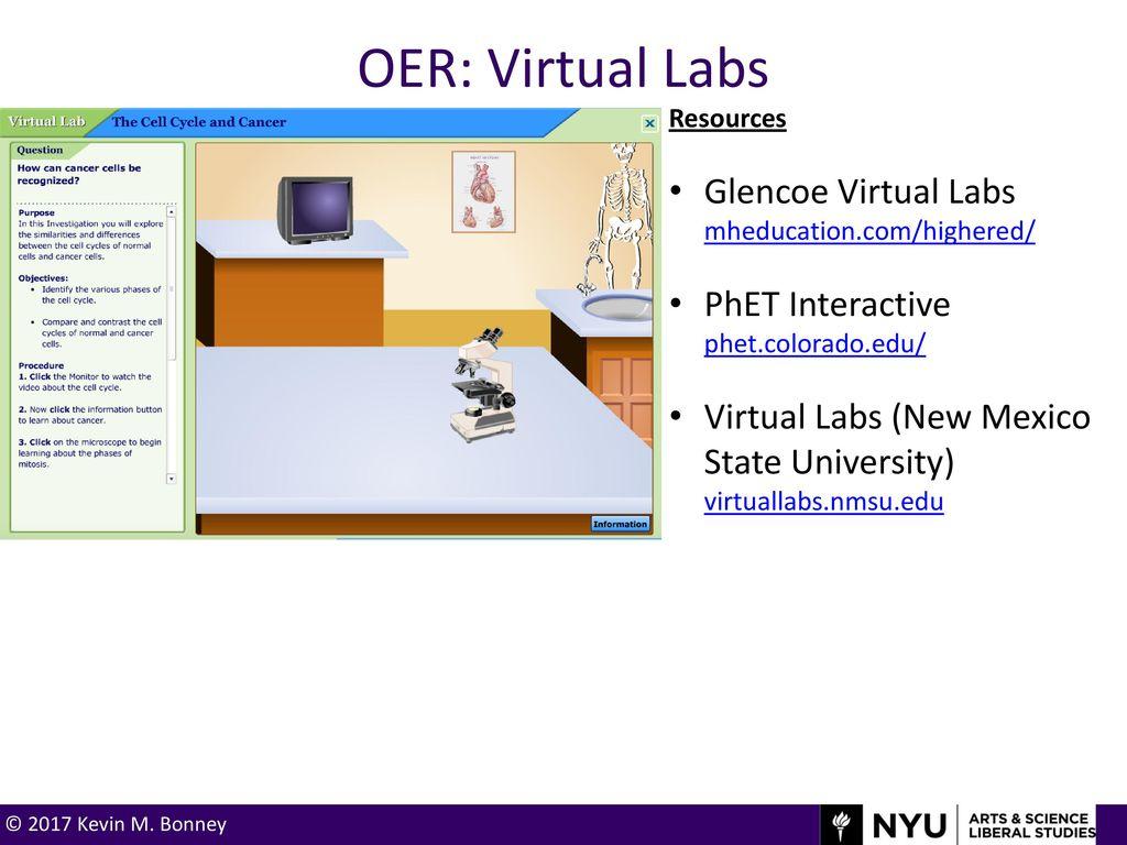 Kevin M  Bonney, Ph D  New York University - ppt download