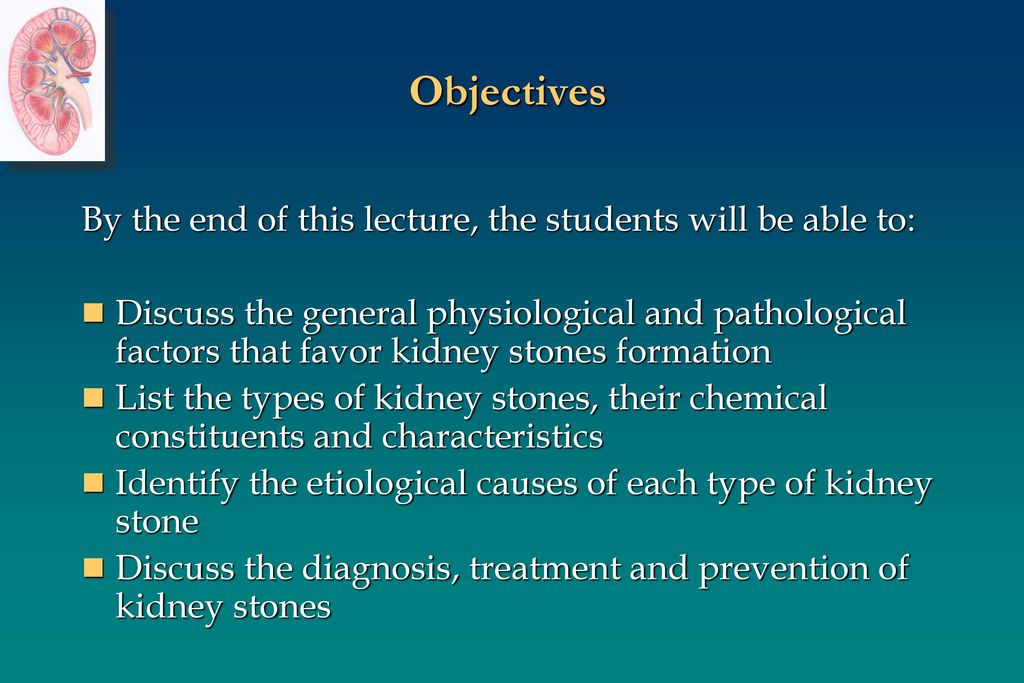 Kidney Stones Renal Block 1 Lecture  - ppt download