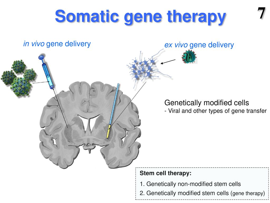 Gene Therapy Ppt Download
