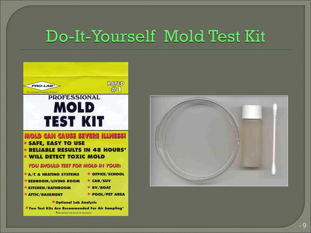 Mold awareness training ppt download 9 do it yourself mold test kit solutioingenieria Image collections