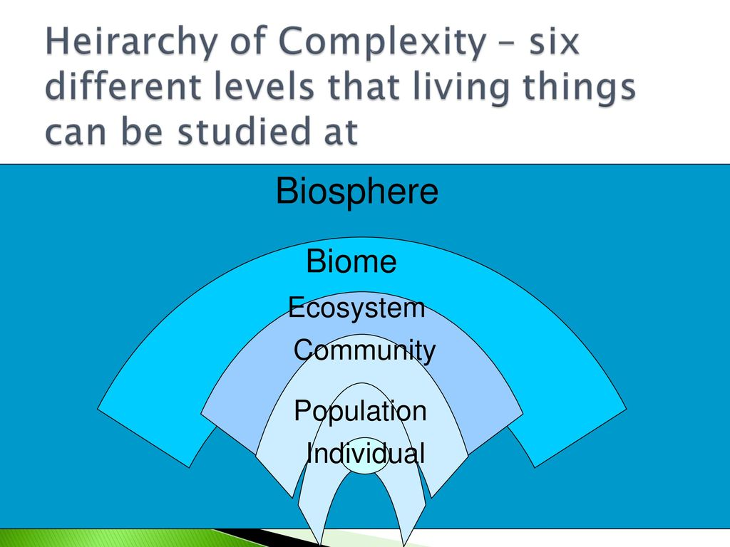 What is the biosphere 56