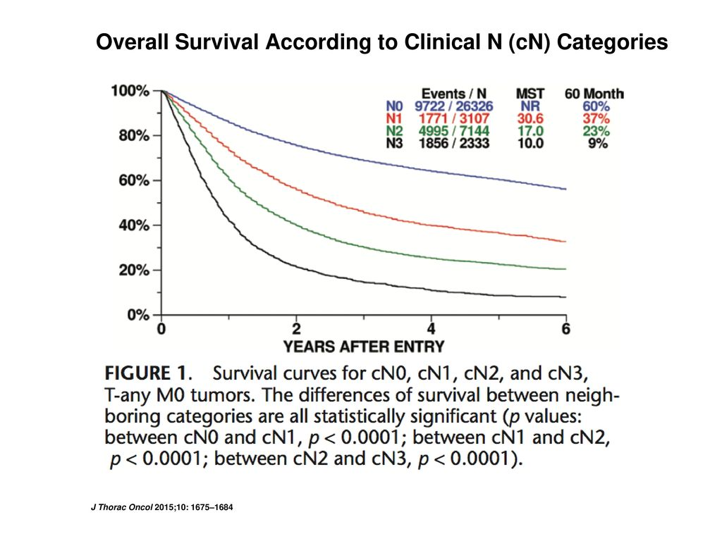 Overall Survival According to Clinical N (cN) Categories