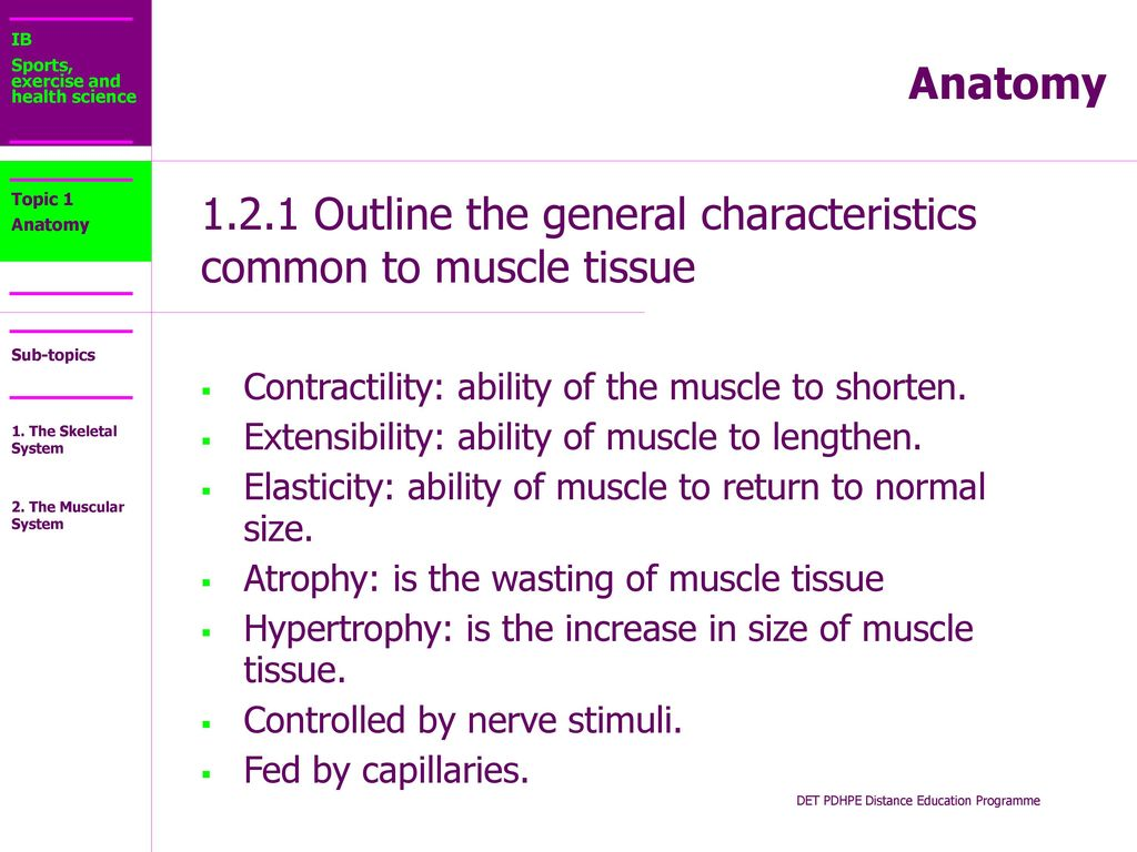 1.2.1 Outline the general characteristics common to muscle tissue ...