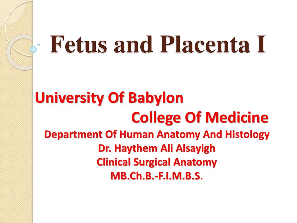 Fetus and Placenta I University Of Babylon College Of Medicine - ppt ...