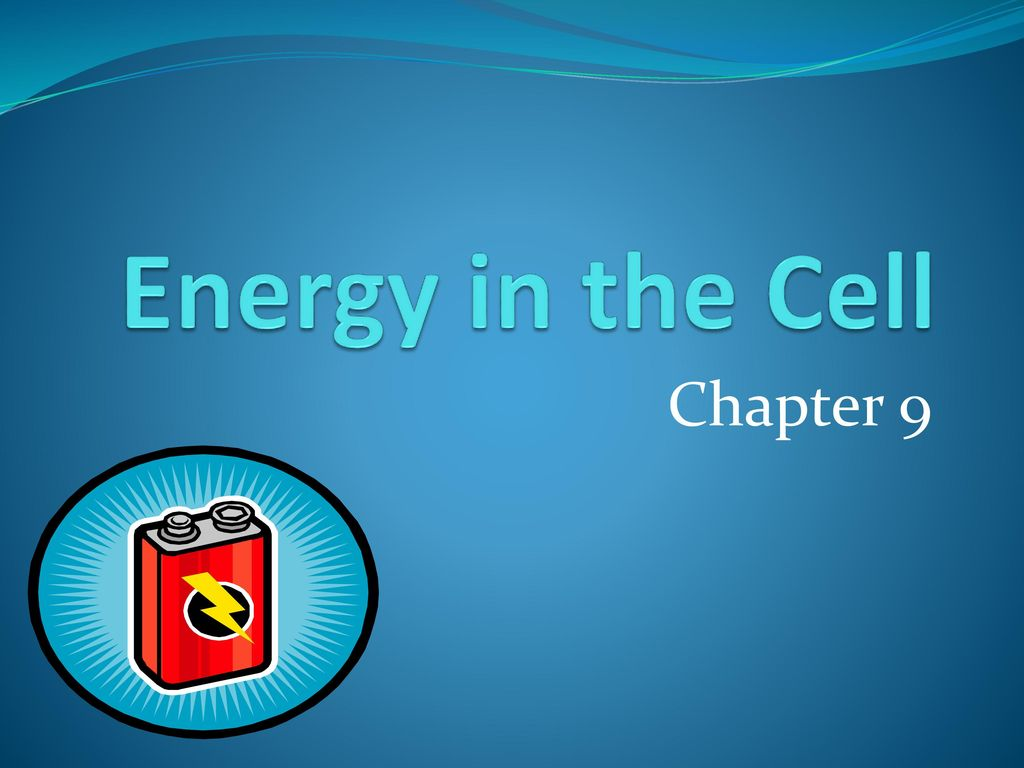 Presentation On Theme Energy In The Cell Chapter 9 Transcript 1