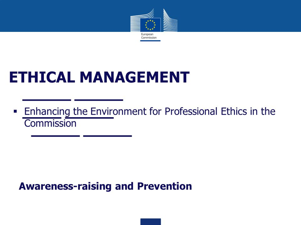 Enhancing the Environment for Professional Ethics in the Commission