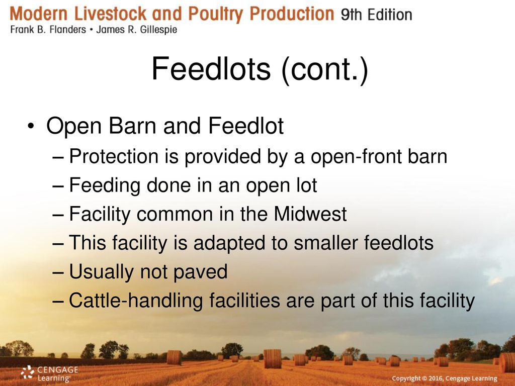 Beef Cattle Housing and Equipment - ppt download