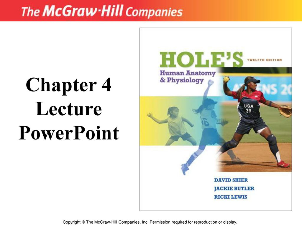 Chapter 4 Lecture PowerPoint - ppt download