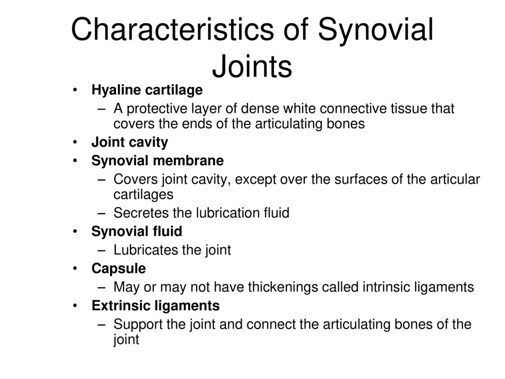 characteristics of synovial joints