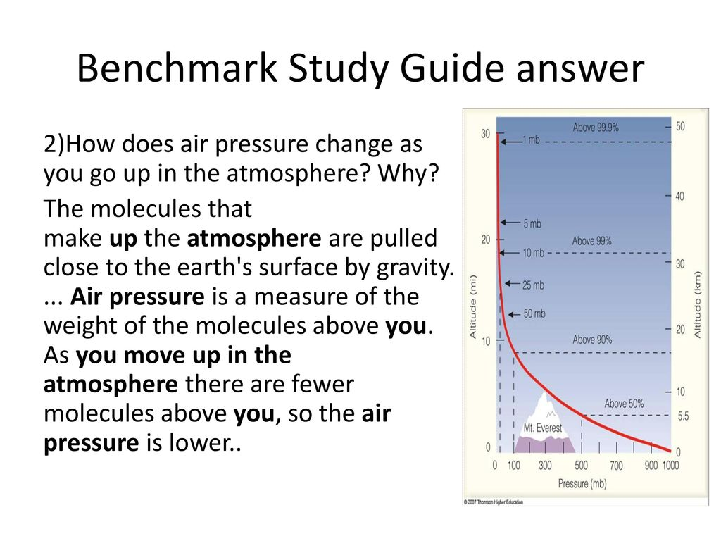 Benchmark Study Guide answer