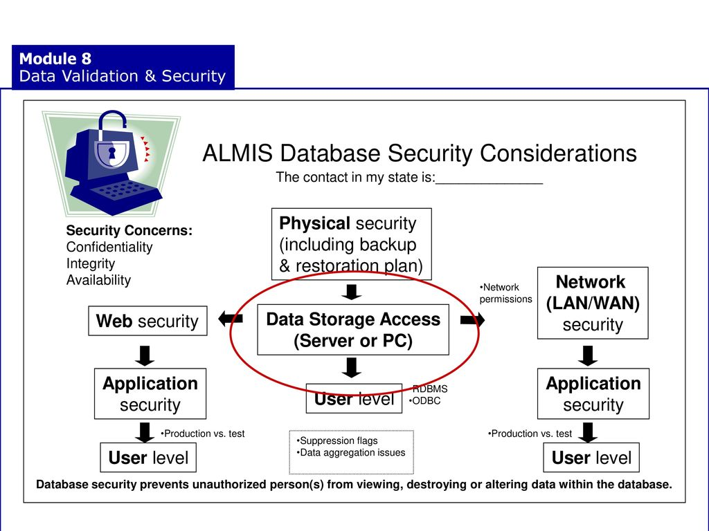Data Validation Security Ppt Download Database And Application Almis Considerations