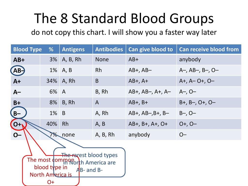 The Most Common Blood Type In North America Is O
