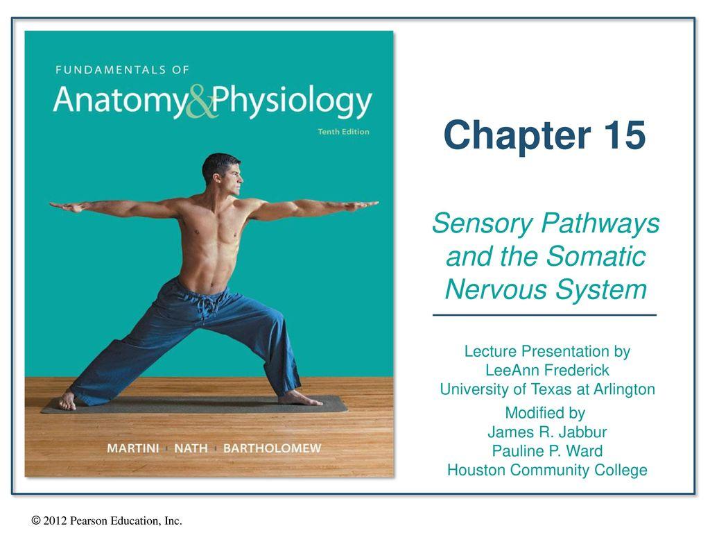 Excelente Fundamentals Anatomy And Physiology Colección de Imágenes ...
